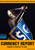 Currency Expectations Report 2010-2011